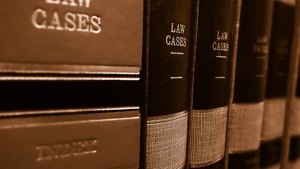 Workshop: the courts and child law